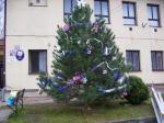 Stavění vánočního stromu 2012