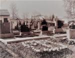 Hřbitov1